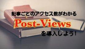 記事、アクセス数、Post-Views